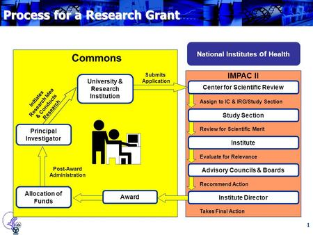 1 Process for a Research Grant National Institutes of Health IMPAC II Center for Scientific Review Study Section Institute Advisory Councils & Boards Assign.