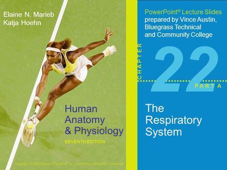 Copyright © 2006 Pearson Education, Inc., publishing as Benjamin Cummings Human <strong>Anatomy</strong> & <strong>Physiology</strong> SEVENTH EDITION Elaine N. Marieb Katja Hoehn PowerPoint.