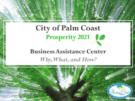 City of Palm Coast Prosperity 2021 Business Assistance Center Why, What, and How?