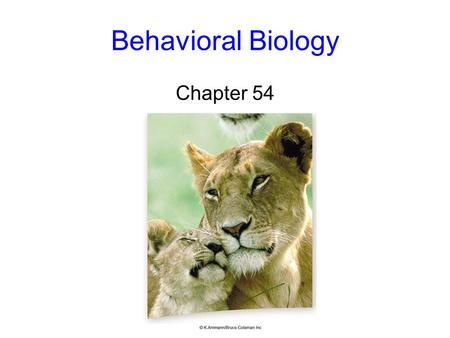 Behavioral Biology Chapter 54