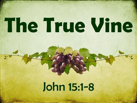 The True Vine John 15:1-8. Symbols: Jesus is the vine The Father is the gardener We are the branches Vs. 1-4 Jesus is the TRUE vine  He is the genuine.
