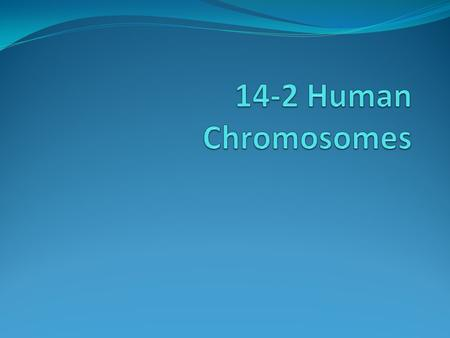 A human diploid cell contains more than 6 billion base pairs of DNA All DNA is packed into 46 chromosomes.
