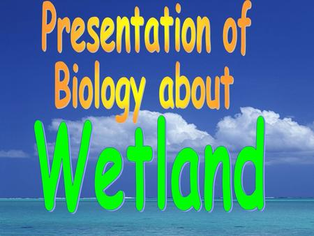 ~ maintenance of biodiversity Wetland provides large amount of food, a place for living and reproduction to animals and plants especially to those.