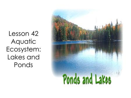 Lesson 42 Aquatic Ecosystem: Lakes and Ponds. As geographers study the many ecosystems around the world, many similarities or patterns become evident.