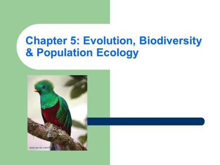 Chapter 5: Evolution, Biodiversity & Population Ecology