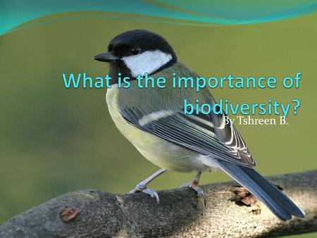 By Tshreen B.. What is biodiversity? Biodiversity is the number of different species within an area and also the genetic variation that exists within.