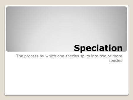 Speciation The process by which one species splits into two or more species.
