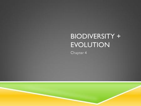 BIODIVERSITY + EVOLUTION Chapter 4. BRIDGING THE GAP  Biodiversity is all of the differences amongst the living world.  So how do topics already covered.
