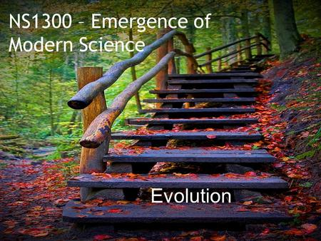 "NS1300 – Emergence of Modern Science Evolution.  What did Theodore Dobzhansky mean when he said, ""Nothing in biology makes sense without evolution""?"