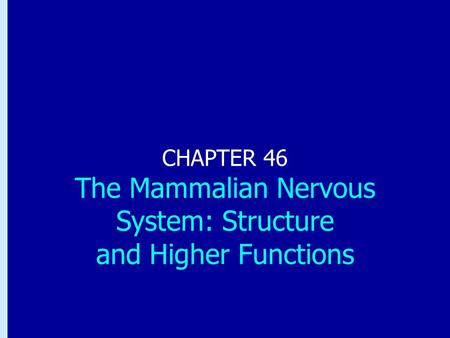 Chapter 46: The Mammalian Nervous System: Structure and Higher Functions CHAPTER 46 The Mammalian Nervous System: Structure and Higher Functions.