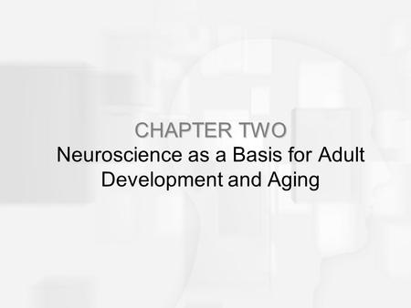 CHAPTER TWO CHAPTER TWO Neuroscience as a Basis for Adult Development and Aging.