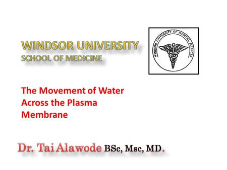 The Movement of Water Across the Plasma Membrane.