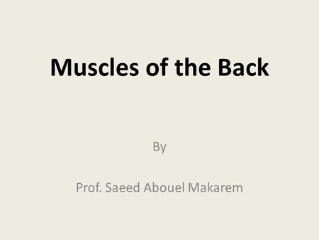 By Prof. Saeed Abouel Makarem