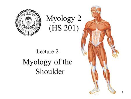 1 Myology 2 (HS 201) Lecture 2 Myology of the Shoulder.