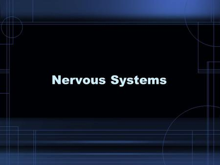 Nervous Systems. THINK ABOUT IT – Imagine that you are at a favorite place. Now, think about the way you experience that place. –You gather information.