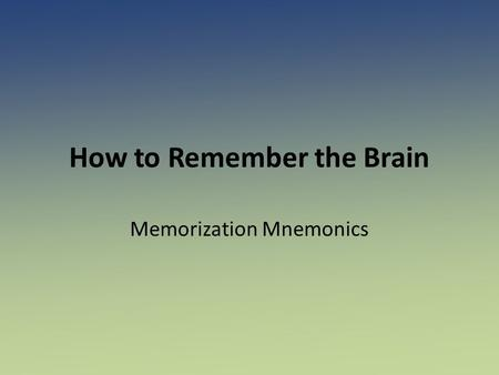 How to Remember the Brain
