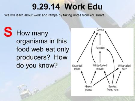 9.29.14 Work Edu How many organisms in this food web eat only producers? How do you know? S We will learn about work and ramps by taking notes from edusmart.
