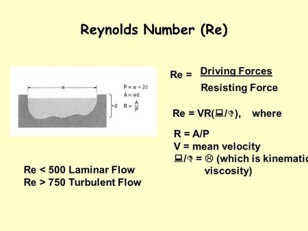 Reynolds Number (Re) Re = R = A/P V = mean velocity  /  =  (which is kinematic viscosity) Re = VR(  /  ), where Driving Forces Resisting Force Re.