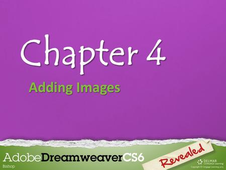 Chapter 4 Adding Images. Chapter 4 Lessons Introduction 1.Insert and align images 2.Enhance an image and use alternate text 3.Insert a background image.