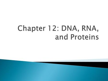 A. DNA— deoxyribonucleic acid; determines an organism's traits by controlling when proteins in the body are made 1. Proteins and enzymes —control most.