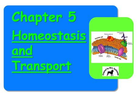 Chapter 5 Homeostasis and Transport. Homeostasis & Transport BIG IDEAS: Cell Membranes help organisms maintain homeostasis by controlling what substances.