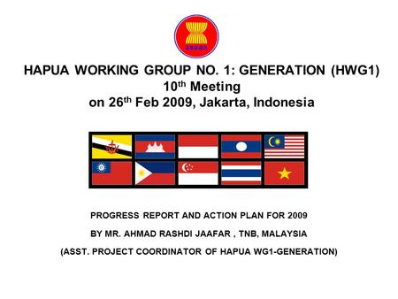 HAPUA WORKING GROUP NO. 1: GENERATION (HWG1) 10 th Meeting on 26 th Feb 2009, Jakarta, Indonesia PROGRESS REPORT AND ACTION PLAN FOR 2009 BY MR. AHMAD.