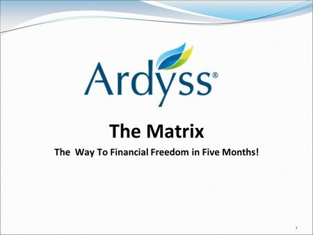 1 The Matrix The Way To Financial Freedom in Five Months!