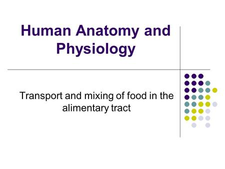 Human Anatomy and Physiology Transport and mixing of food in the alimentary tract.