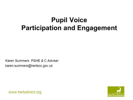 Pupil Voice Participation and Engagement Karen Summers PSHE & C Adviser