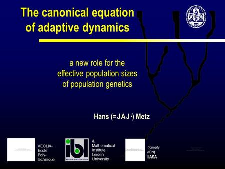 The canonical equation of adaptive dynamics a new role for the effective population sizes of population genetics Hans (= J A J * ) Metz (formerly ADN )