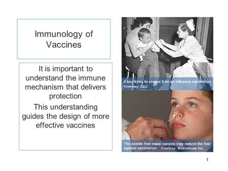 1 Immunology of Vaccines It is important to understand the immune mechanism that delivers protection This understanding guides the design of more effective.
