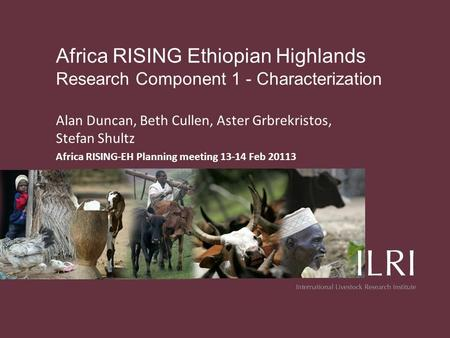 Africa RISING Ethiopian Highlands Research Component 1 - Characterization Alan Duncan, Beth Cullen, Aster Grbrekristos, Stefan Shultz Africa RISING-EH.
