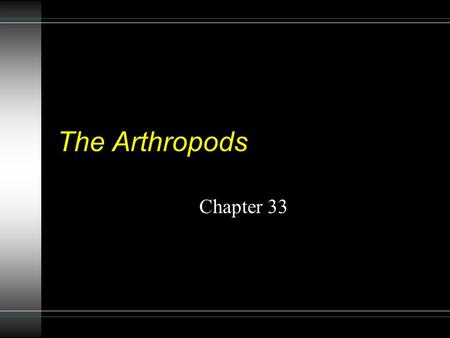 The Arthropods Chapter 33 General statistics u Most numerous and successful phyla u 400,000 known plant species u 250,000 known non-arthropod animals.