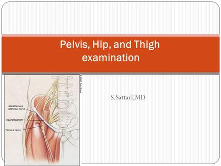 S.Sattari,MD Pelvis, Hip, and Thigh examination. pelvic ring protects vital internal structures.