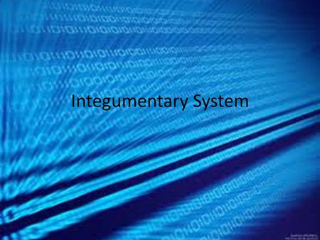 Integumentary System. The integumentary system is all about protection. This system protects your body from diseases by providing a shield blocking off.