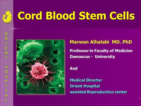 1 Cord Blood Stem Cells Cord Blood Stem Cells Marwan Alhalabi MD. PhD Professor in Faculty of Medicine Damascus - University And Medical Director Orient.
