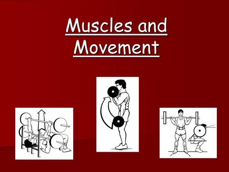 Muscles and Movement. Last lesson (Previous Learning) Warm-up & Cool-down Warm-up Pulse Raising & Stretching to reduce risk of injury & prepare the body.