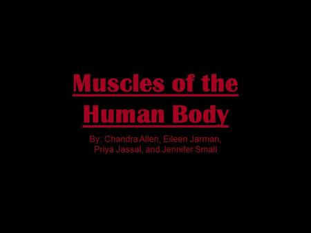 Muscles of the Human Body By: Chandra Allen, Eileen Jarman, Priya Jassal, and Jennifer Small.