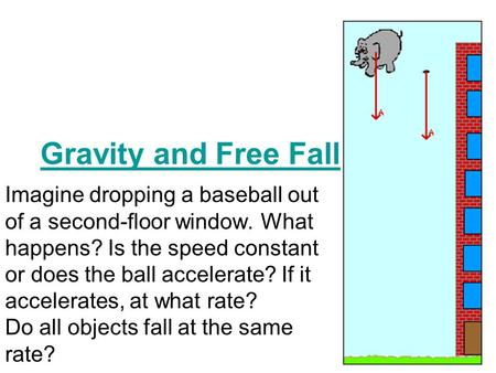 Gravity and Free Fall Imagine dropping a baseball out of a second-floor window. What happens? Is the speed constant or does the ball accelerate? If it.
