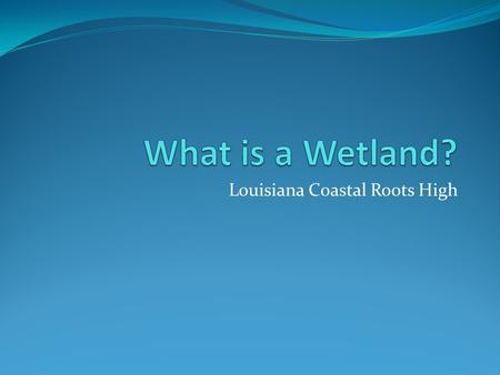 Louisiana Coastal Roots High. Read and Discuss The swamps and marshes of coastal Louisiana are among the Nation's most fragile and valuable wetlands,