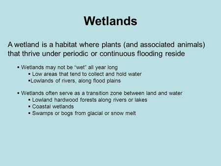 "Wetlands A wetland is a habitat where plants (and associated animals) that thrive under periodic or continuous flooding reside  Wetlands may not be ""wet"""