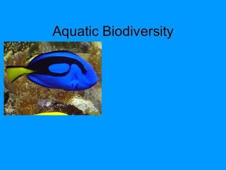 Aquatic Biodiversity. Core Case Study Why should we care about coral reefs? Coral reefs form in clear, costal waters of the tropics and subtropics. In.