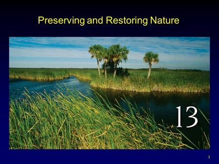 1 Preserving and Restoring Nature. 2 Outline Parks and Nature Preserves Wilderness Areas and Wildlife Refuges Global Parks and Reserves Preserving Functional.