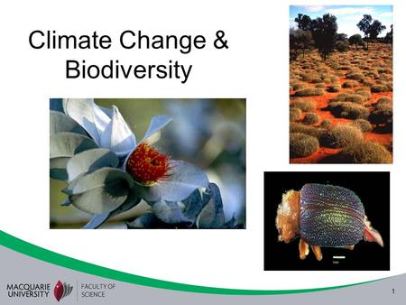 1 Climate Change & Biodiversity. 2 CO 2 and global temperature.