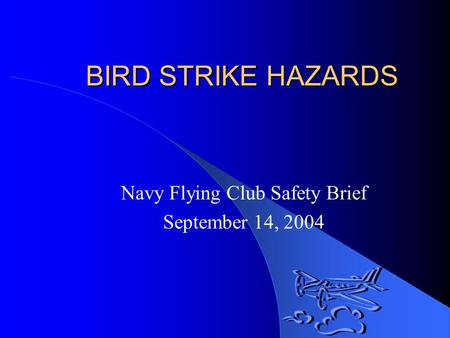 BIRD STRIKE HAZARDS Navy Flying Club Safety Brief September 14, 2004.