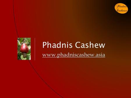 Phadnis Cashew www.phadniscashew.asia. Index Phadnis Cashew www.phadniscashew.asia Serial NumberTopicSlide Number 1Product Hierarchy3 2Cashew Tree4 3Cashew.