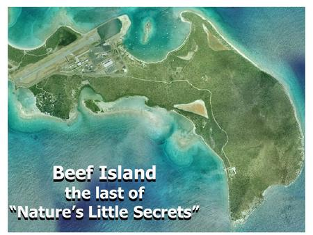 "Beef Island the last of ""Nature's Little Secrets"" Beef Island the last of ""Nature's Little Secrets"""