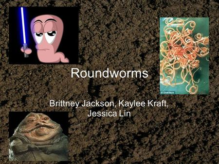 Roundworms Brittney Jackson, Kaylee Kraft, Jessica Lin.