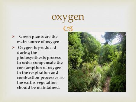  oxygen  Green plants are the main source of oxygen  Oxygen is produced during the photosynthesis process in order compensate the consumption of oxygen.