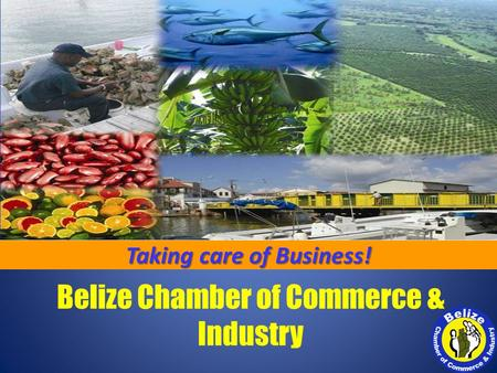Belize Chamber of Commerce & Industry Taking care of Business!